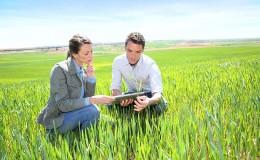 peritos agrícolas