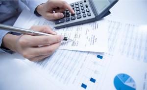 peritos auditores y economistas